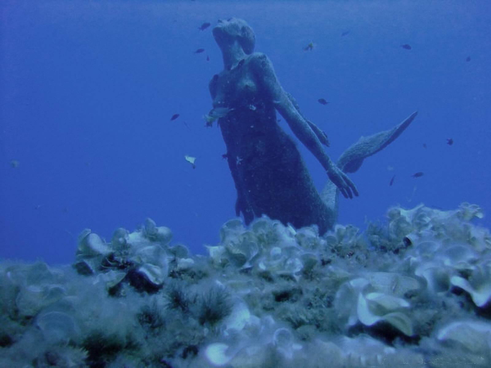 Sirena di Sicilia 12