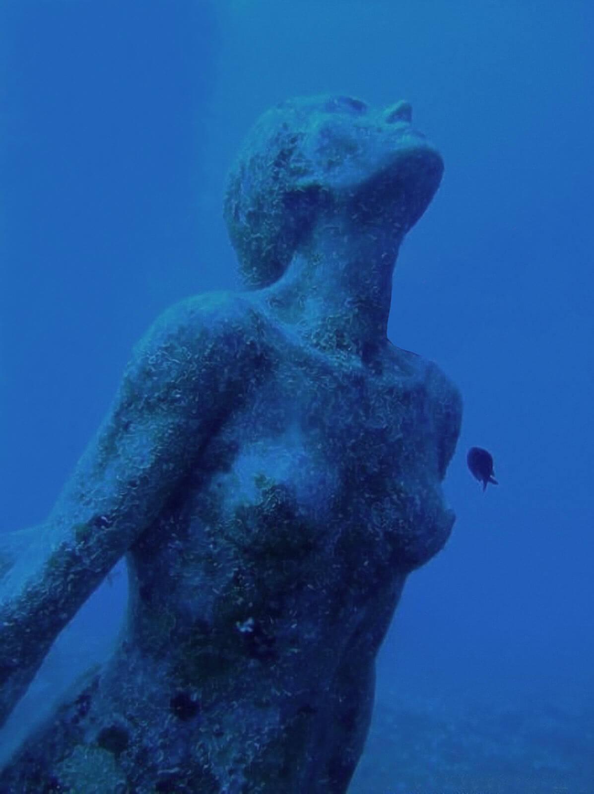 Sirena di Sicilia 13
